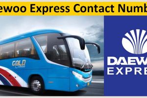 Daewoo Express Contact Numbers & Helpline