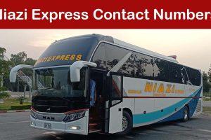 Niazi Express Contact Numbers & Helpline